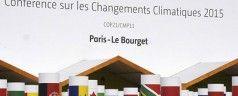 Cinque soluzioni contro i cambiamenti climatici