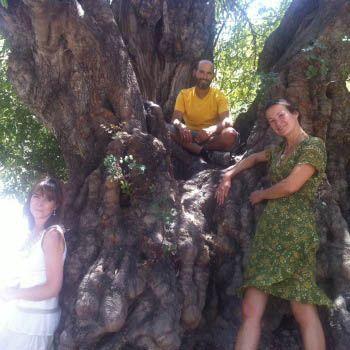 Damanhur News: Celebra l'Estate Attraverso un Dono